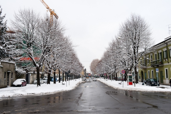snow at km 0 - 1