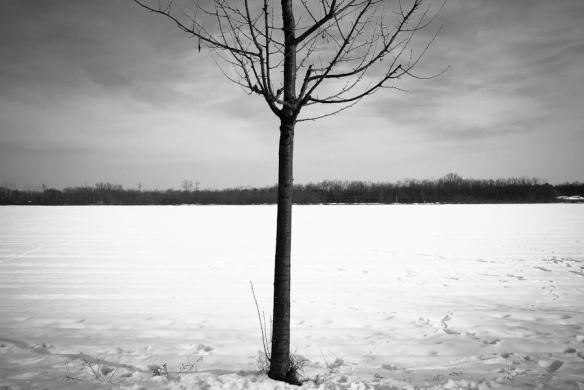 winter 4/4