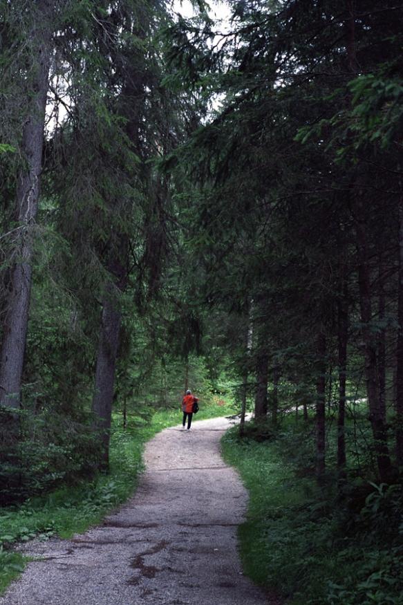 austria_3416_24