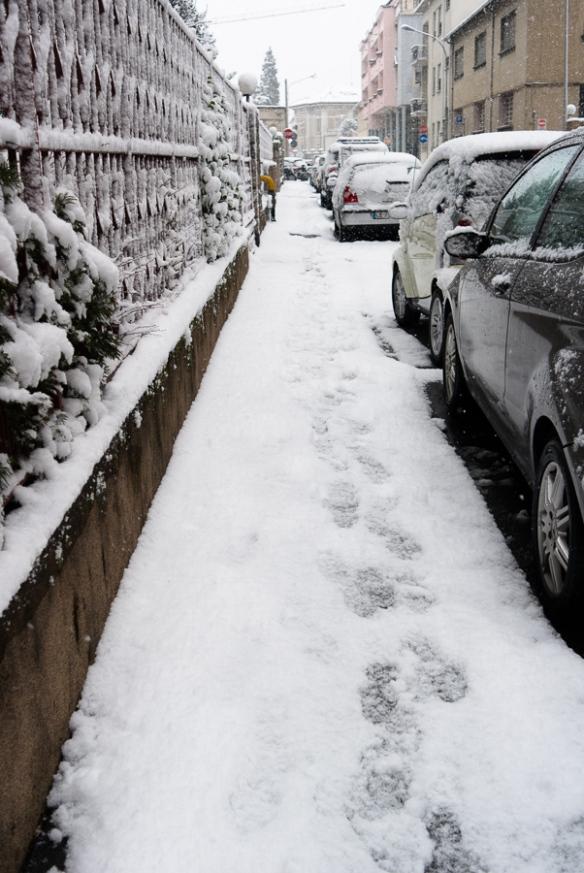 inverno_2013-6