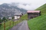 classico: strada contadina, farmer's road