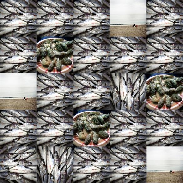fish? (1 di 1)
